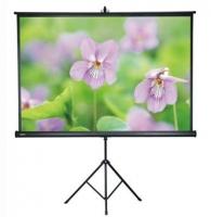 """Экран AVScreen 3V100MTV(4:3;100"""") 203х152"""