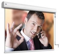 Adeo Screen Professional Vision White 283x212 (ручной)