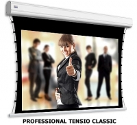 Adeo Screen Professional Tensio clas Ref.White 308x174